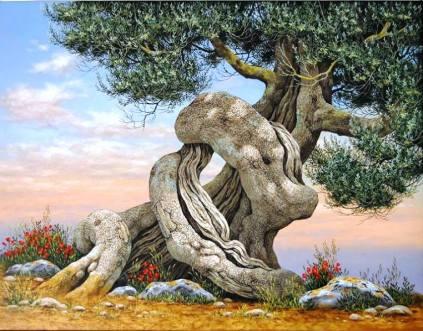 Biago Magliani_ Ulivo, 100x80, copertina